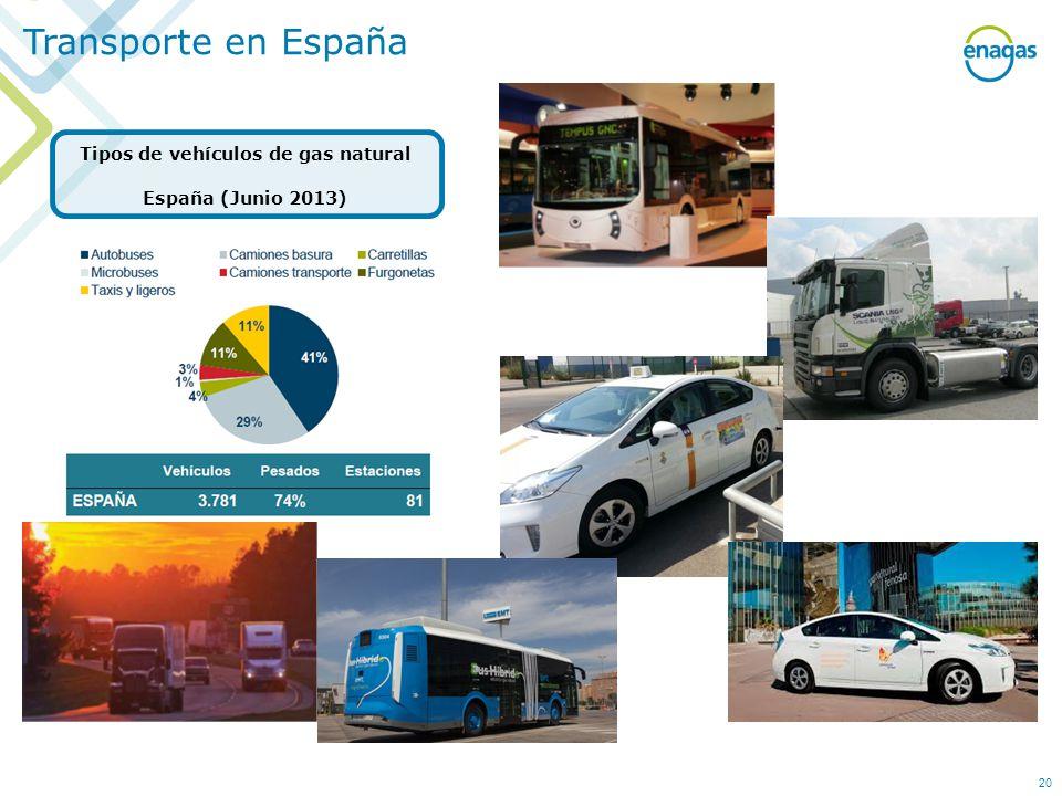 Tipos de vehículos de gas natural España (Junio 2013)