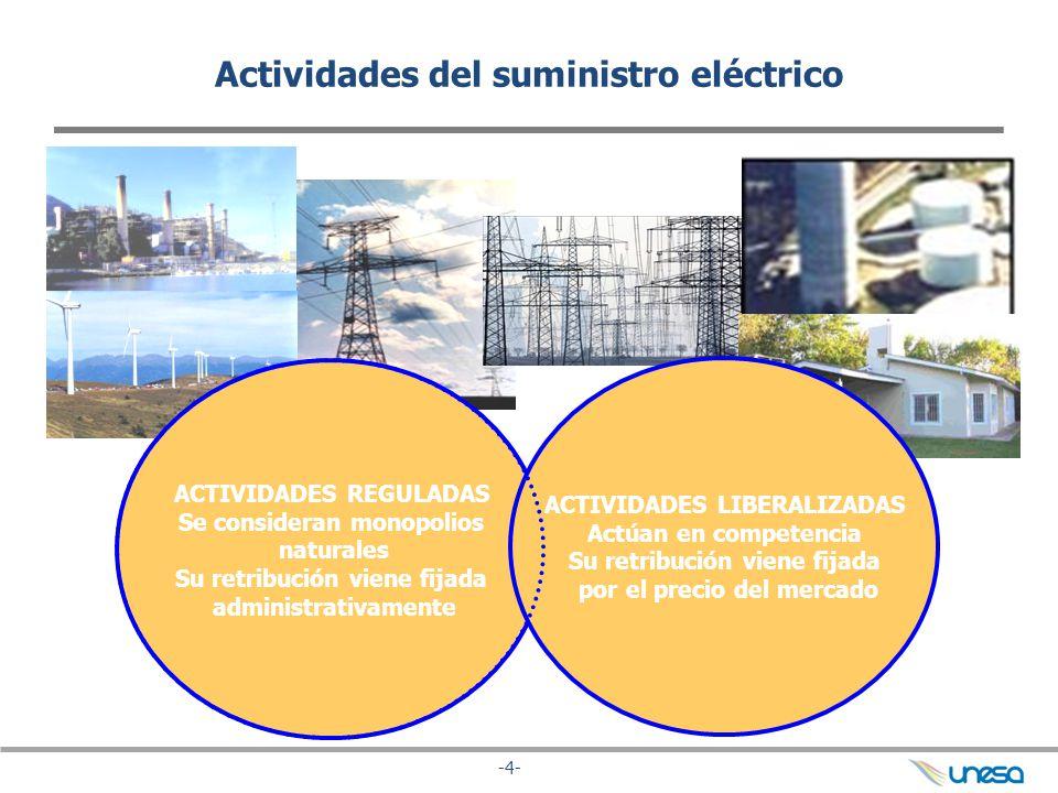 Actividades del suministro eléctrico