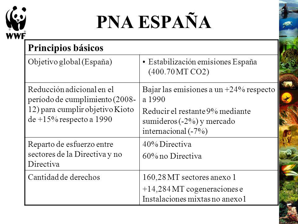 PNA ESPAÑA Principios básicos Objetivo global (España)