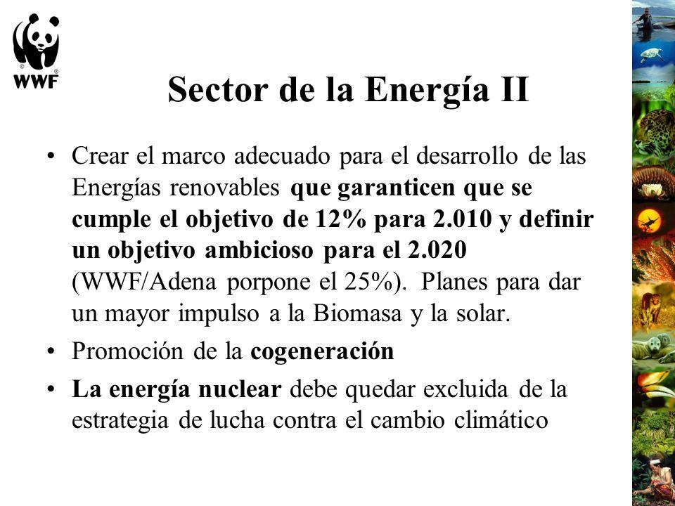Sector de la Energía II