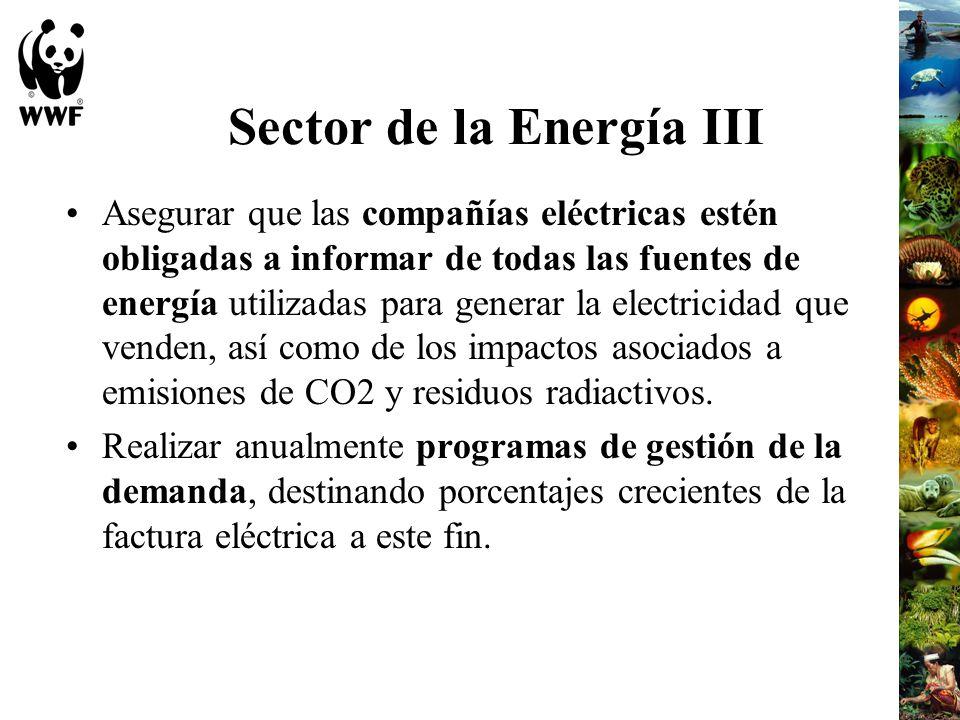 Sector de la Energía III