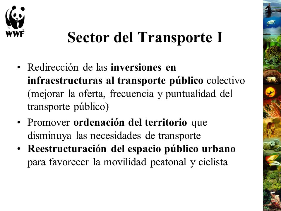 Sector del Transporte I