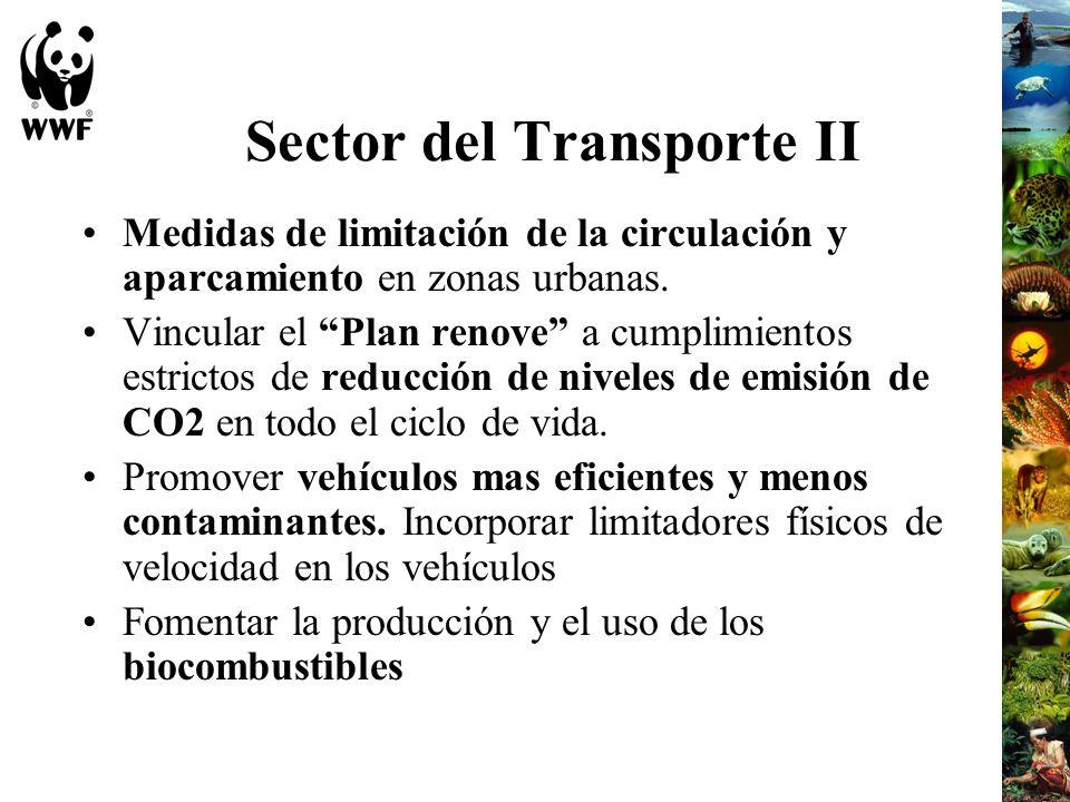 Sector del Transporte II
