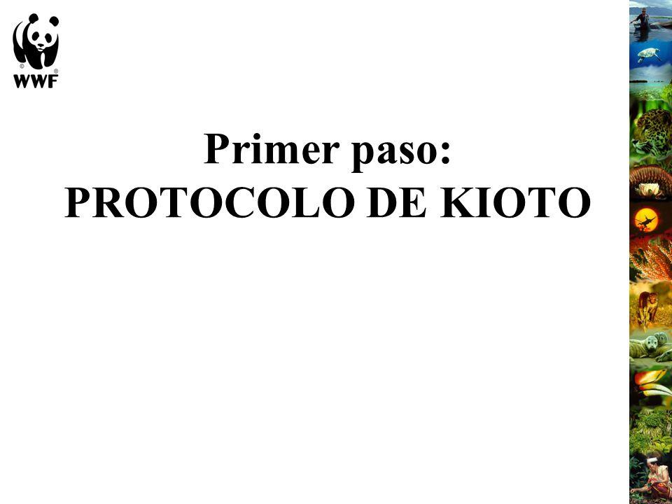 Primer paso: PROTOCOLO DE KIOTO