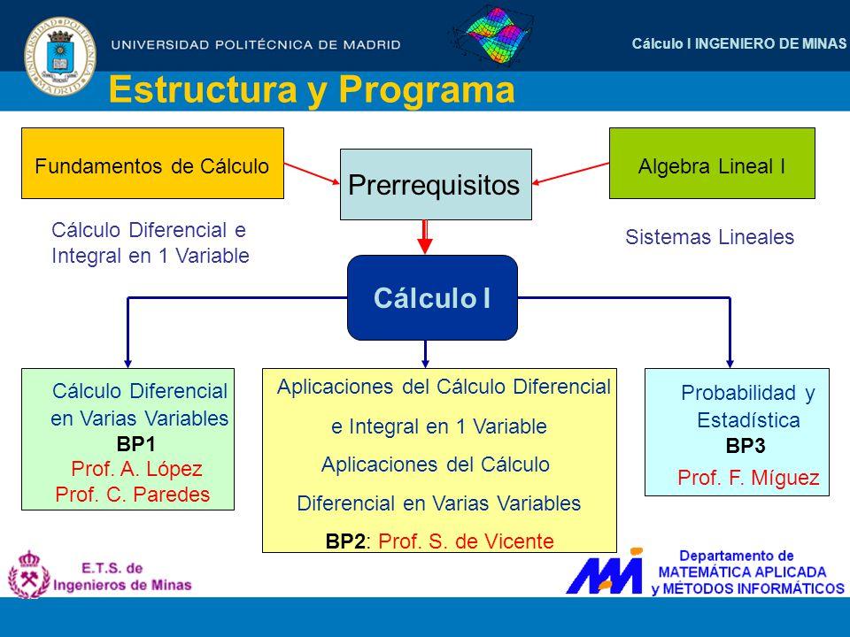 Estructura y Programa Fundamentos de Cálculo Algebra Lineal I