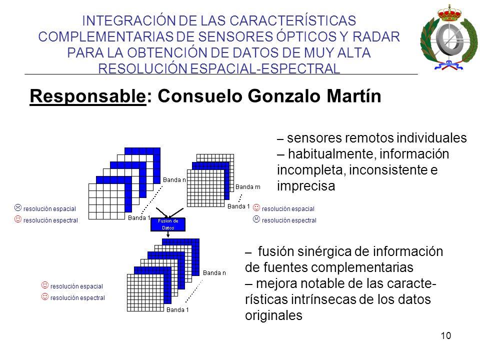 Responsable: Consuelo Gonzalo Martín