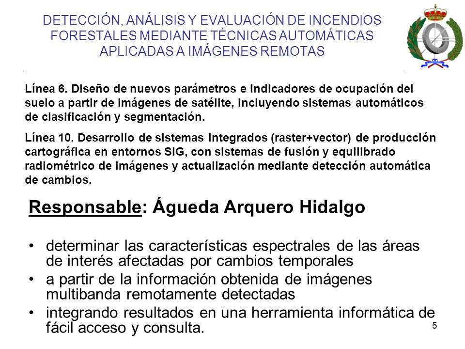 Responsable: Águeda Arquero Hidalgo