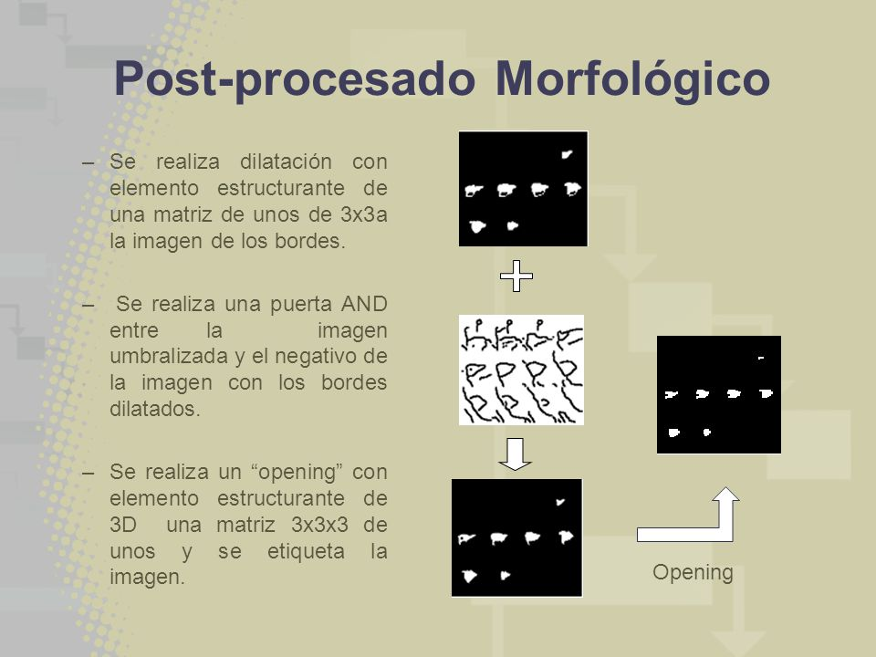 Post-procesado Morfológico