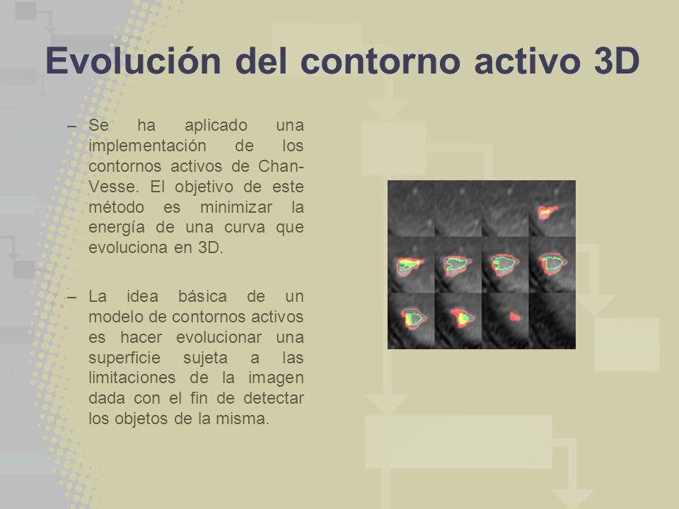 Evolución del contorno activo 3D
