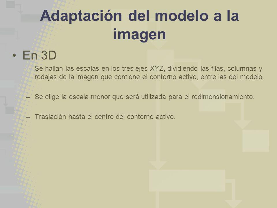 Adaptación del modelo a la imagen