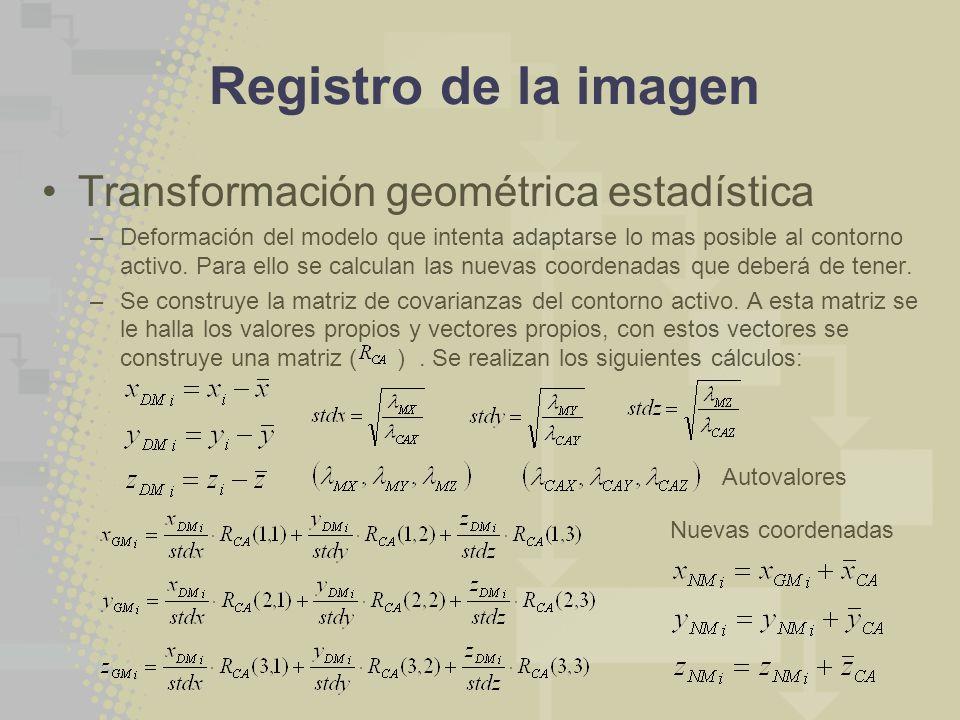 Registro de la imagen Transformación geométrica estadística