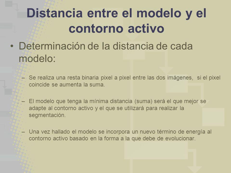 Distancia entre el modelo y el contorno activo