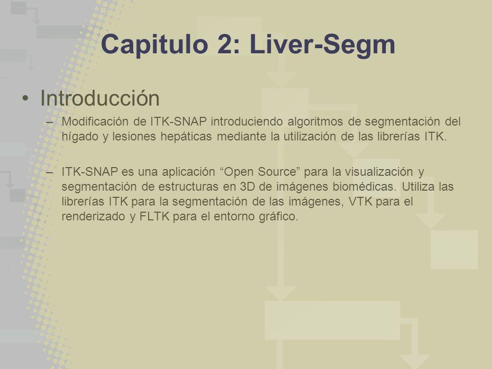 Capitulo 2: Liver-Segm Introducción