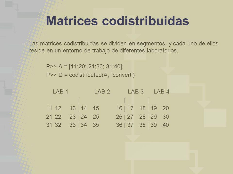 Matrices codistribuidas