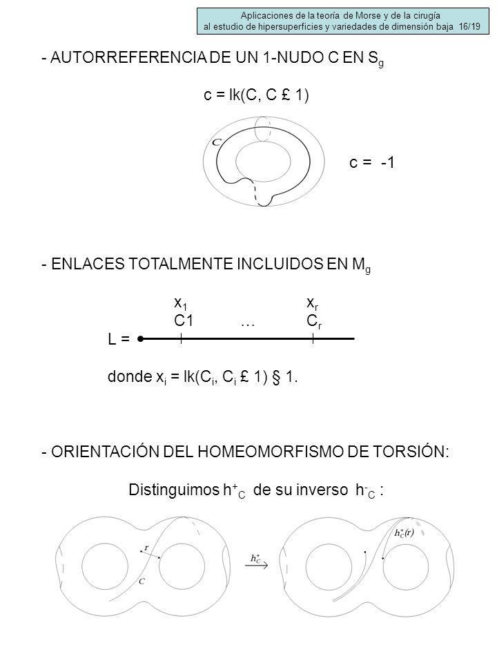 c = -1 - AUTORREFERENCIA DE UN 1-NUDO C EN Sg c = lk(C, C £ 1)