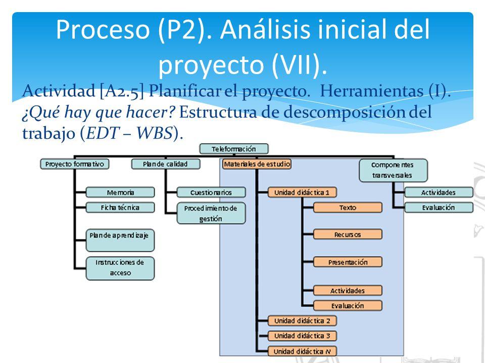 Proceso (P2). Análisis inicial del proyecto (VII).
