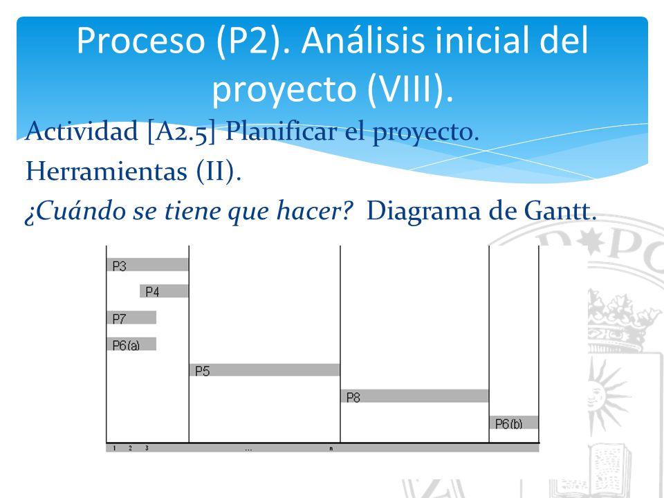 Proceso (P2). Análisis inicial del proyecto (VIII).