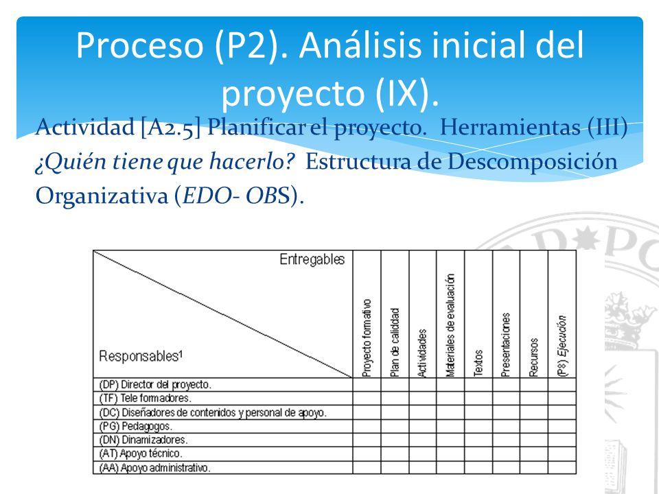 Proceso (P2). Análisis inicial del proyecto (IX).