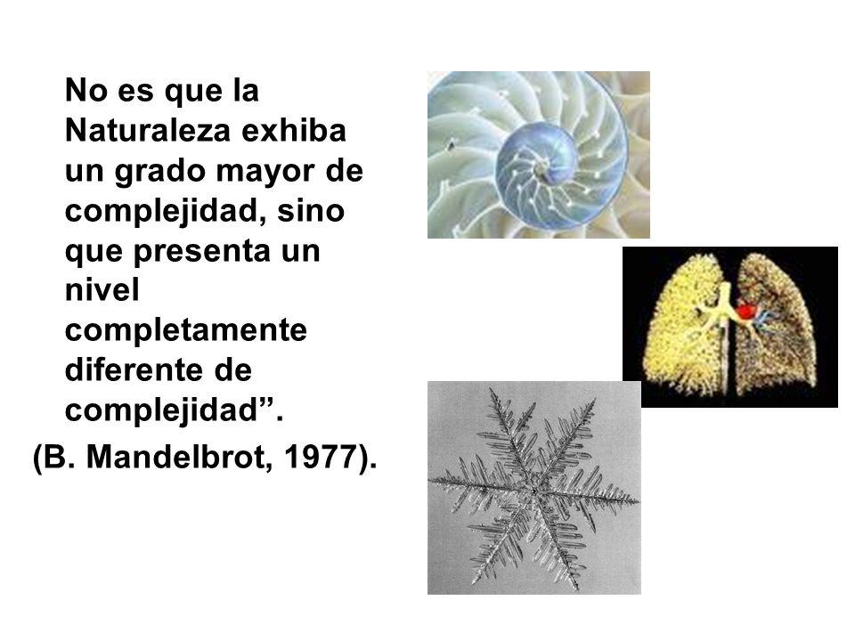 No es que la Naturaleza exhiba un grado mayor de complejidad, sino que presenta un nivel completamente diferente de complejidad .