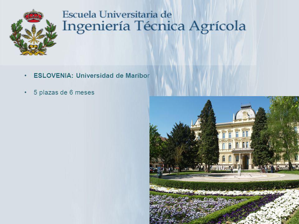 ESLOVENIA: Universidad de Maribor