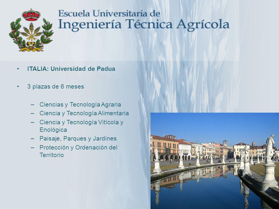 ITALIA: Universidad de Padua
