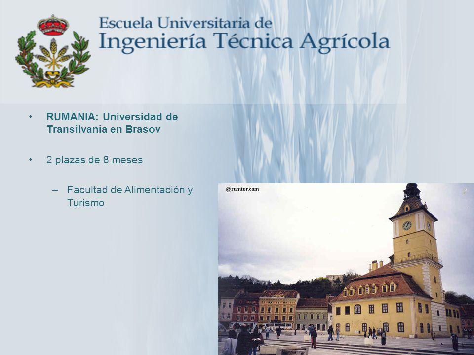 RUMANIA: Universidad de Transilvania en Brasov