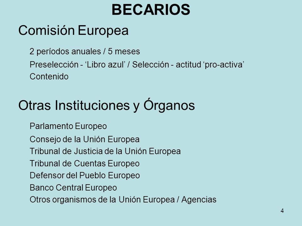 BECARIOS Comisión Europea 2 períodos anuales / 5 meses