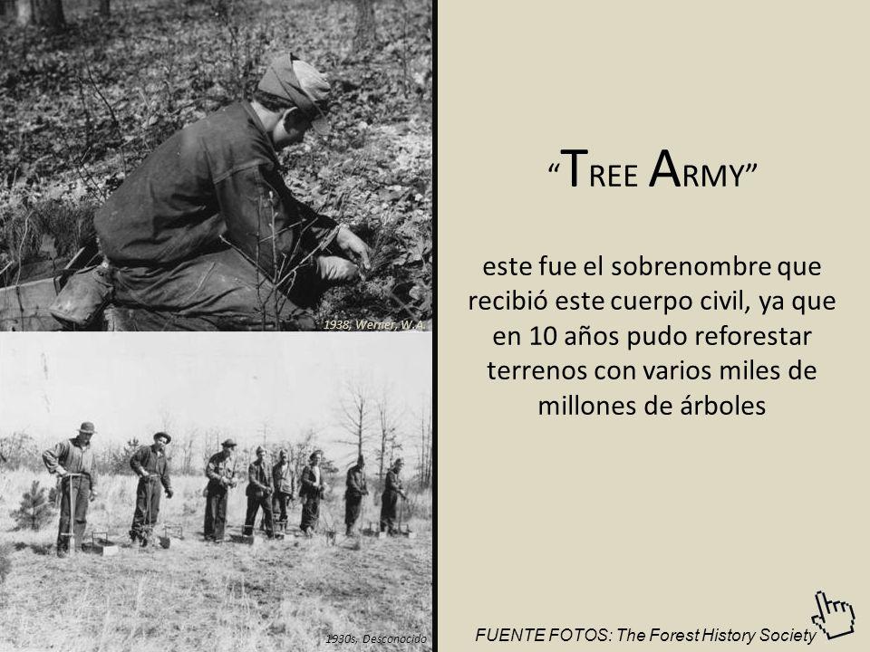 TREE ARMY este fue el sobrenombre que recibió este cuerpo civil, ya que en 10 años pudo reforestar terrenos con varios miles de millones de árboles.