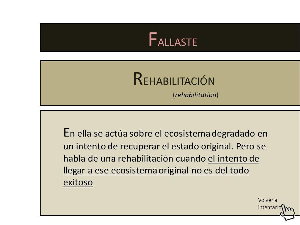 FALLASTE REHABILITACIÓN