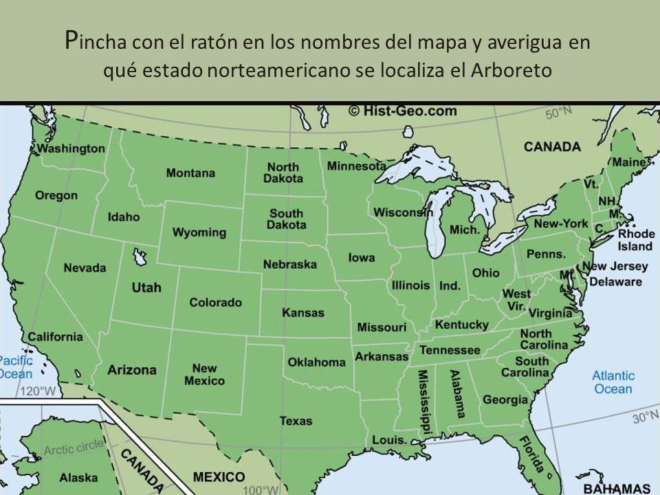 Pincha con el ratón en los nombres del mapa y averigua en qué estado norteamericano se localiza el Arboreto