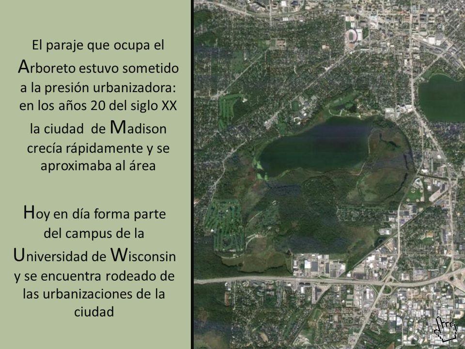 El paraje que ocupa el Arboreto estuvo sometido a la presión urbanizadora: en los años 20 del siglo XX la ciudad de Madison crecía rápidamente y se aproximaba al área