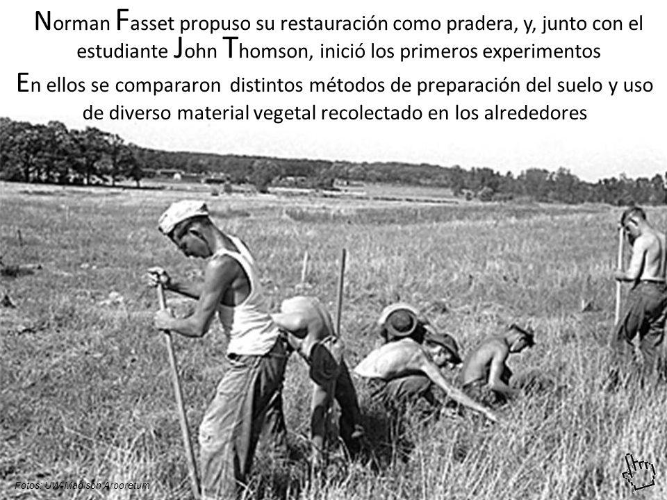 Norman Fasset propuso su restauración como pradera, y, junto con el estudiante John Thomson, inició los primeros experimentos