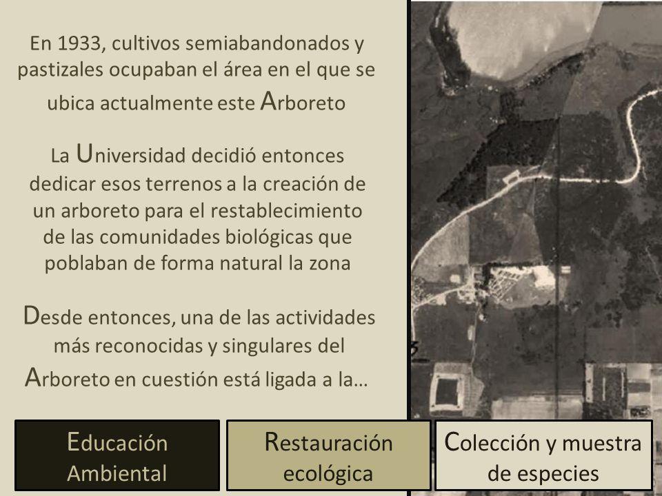 Restauración ecológica Colección y muestra de especies