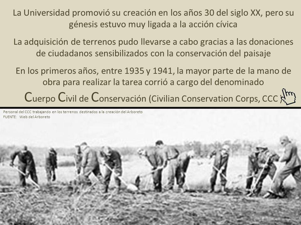 Cuerpo Civil de Conservación (Civilian Conservation Corps, CCC )