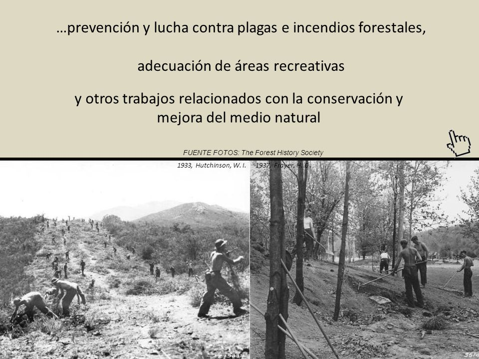 …prevención y lucha contra plagas e incendios forestales,