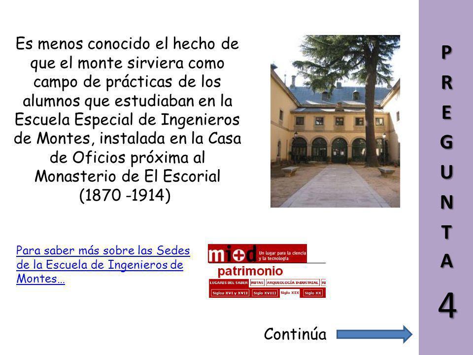 Es menos conocido el hecho de que el monte sirviera como campo de prácticas de los alumnos que estudiaban en la Escuela Especial de Ingenieros de Montes, instalada en la Casa de Oficios próxima al Monasterio de El Escorial