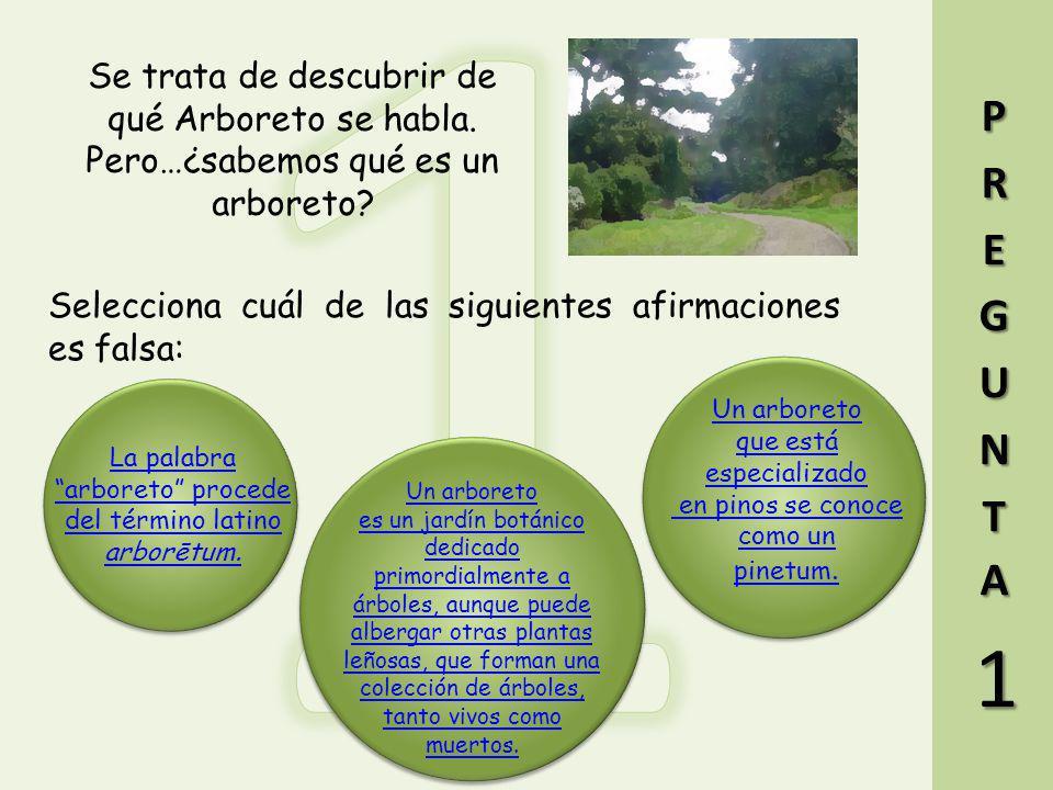 1 Se trata de descubrir de qué Arboreto se habla. Pero…¿sabemos qué es un arboreto PREGUNTA.