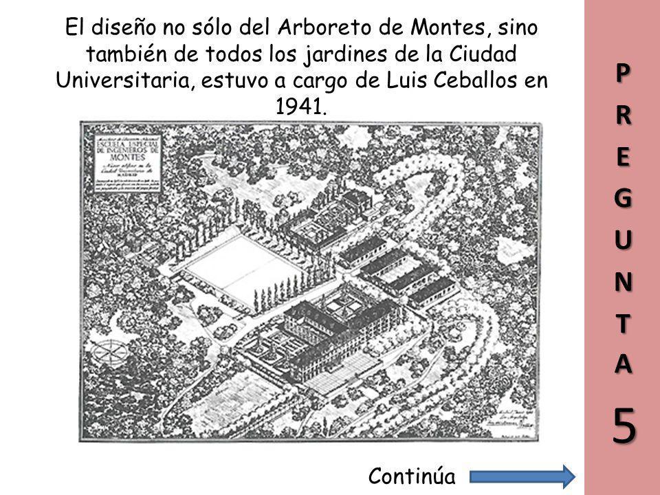 El diseño no sólo del Arboreto de Montes, sino también de todos los jardines de la Ciudad Universitaria, estuvo a cargo de Luis Ceballos en 1941.