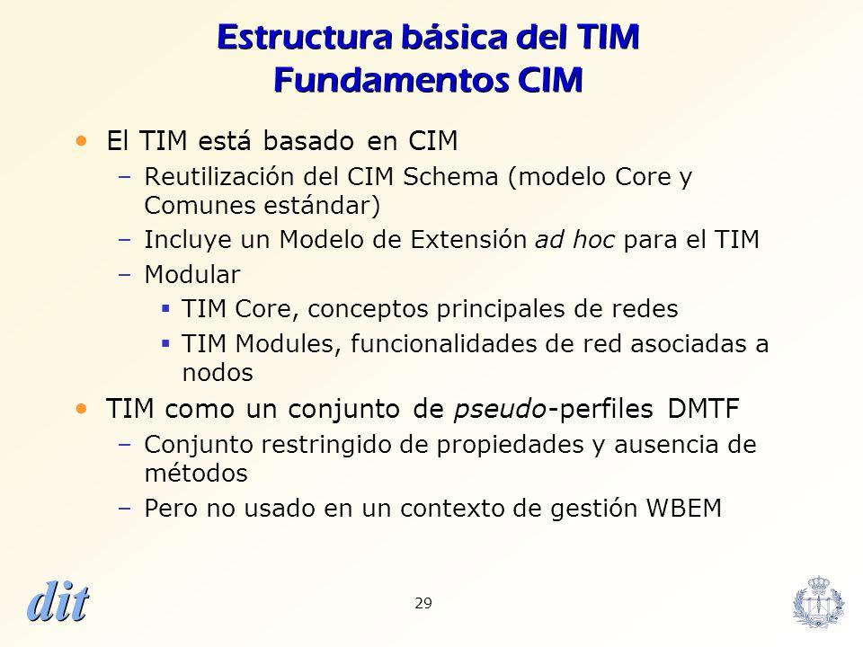 Estructura básica del TIM Fundamentos CIM