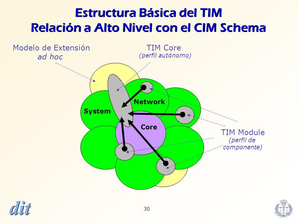 Estructura Básica del TIM Relación a Alto Nivel con el CIM Schema