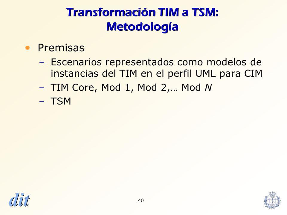 Transformación TIM a TSM: Metodología