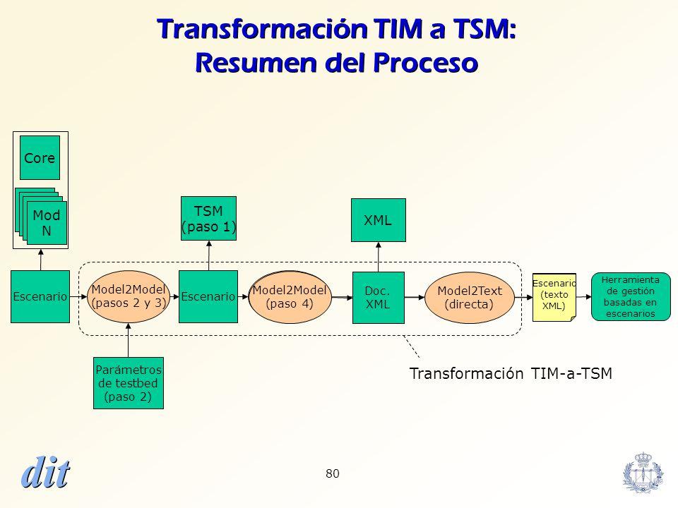 Transformación TIM a TSM: Resumen del Proceso