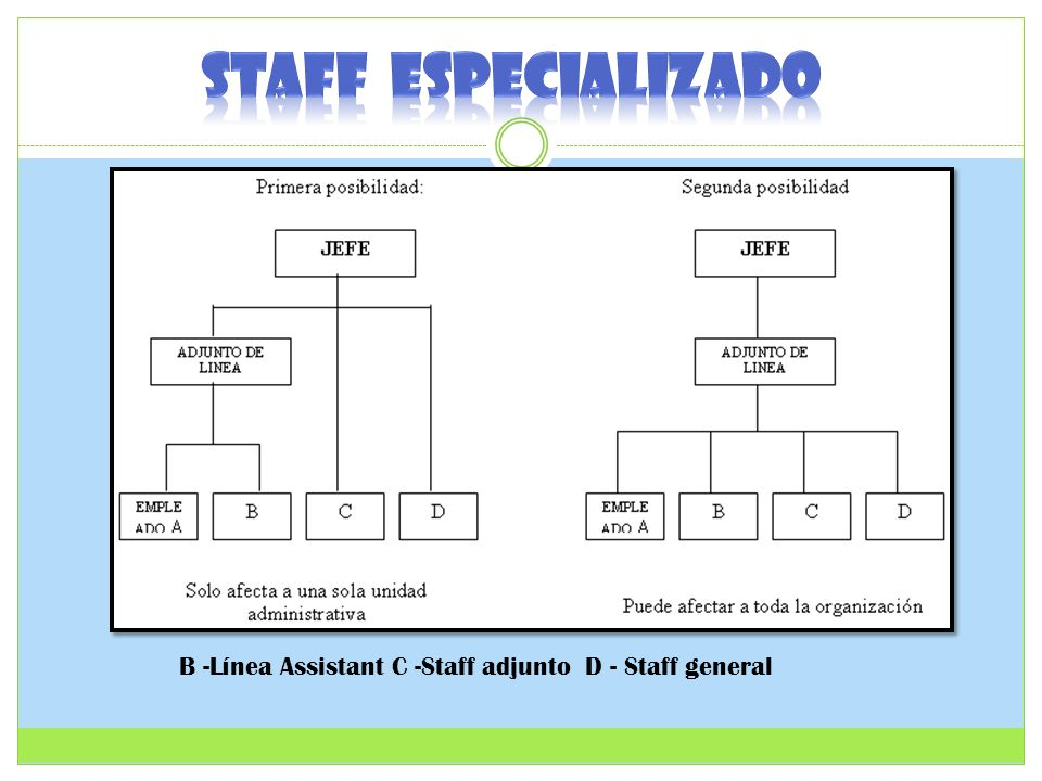 STAFF ESPECIALIZADO B -Línea Assistant C -Staff adjunto D - Staff general