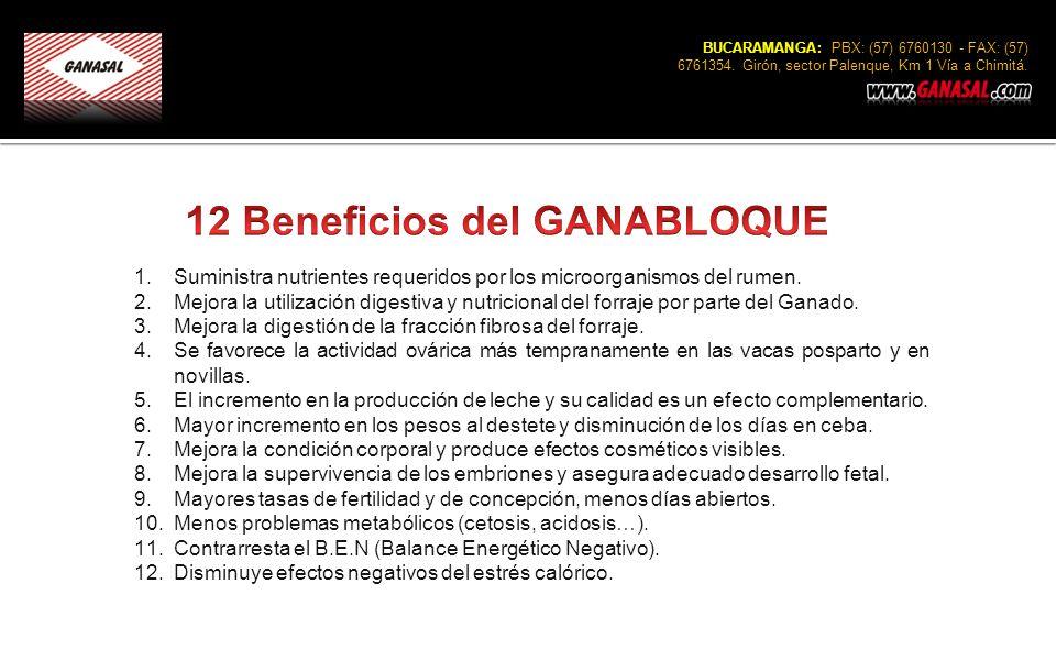12 Beneficios del GANABLOQUE
