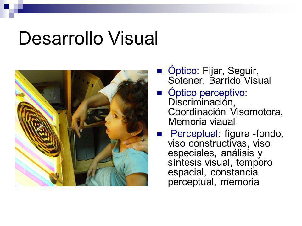Desarrollo Visual Óptico: Fijar, Seguir, Sotener, Barrido Visual