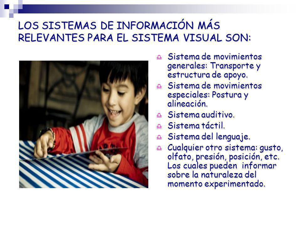 LOS SISTEMAS DE INFORMACIÓN MÁS RELEVANTES PARA EL SISTEMA VISUAL SON: