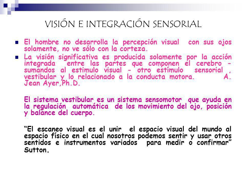 VISIÓN E INTEGRACIÓN SENSORIAL