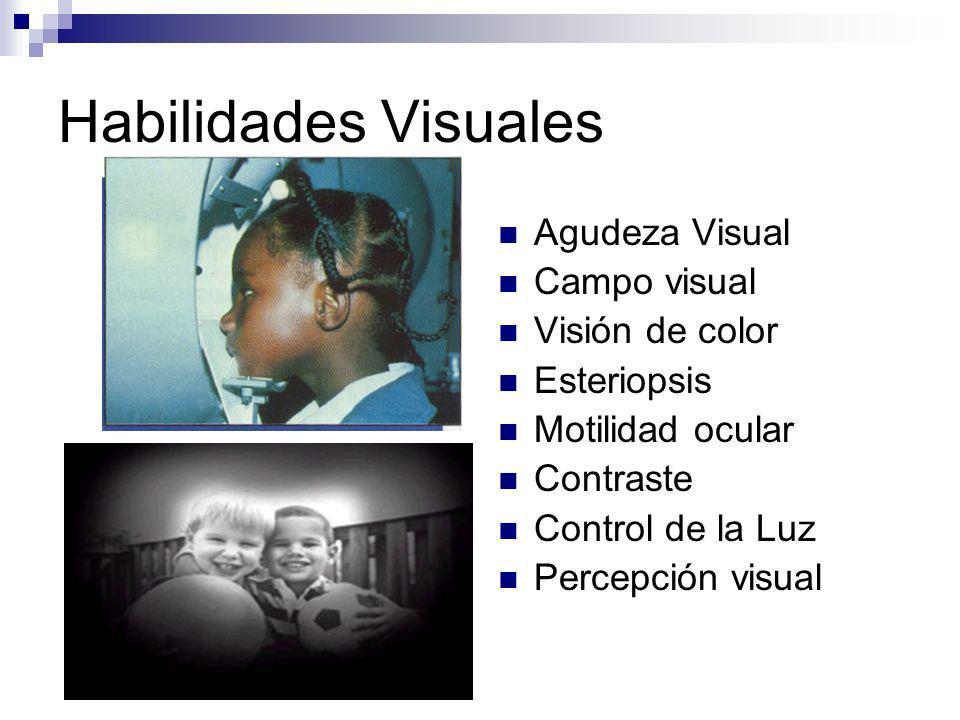 Habilidades Visuales Agudeza Visual Campo visual Visión de color