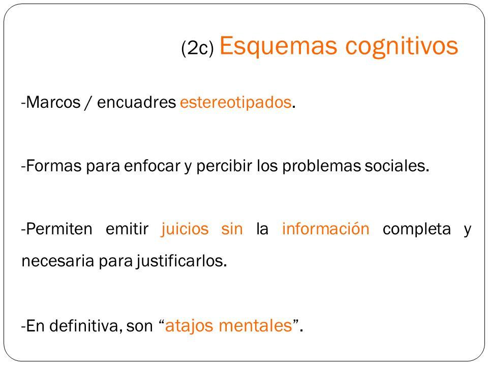 (2c) Esquemas cognitivos