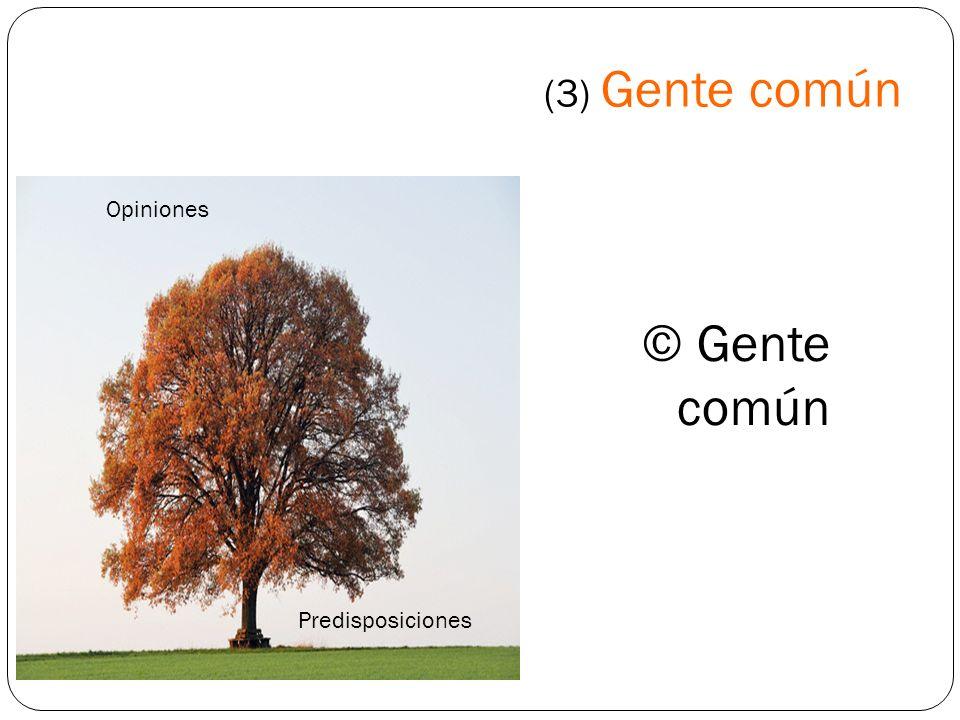 (3) Gente común Opiniones © Gente común Predisposiciones